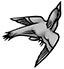 72-Bird Black and White