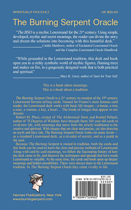 72dpi Burning Serpent BackCover